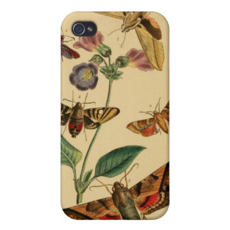 Vintage Moths Entomology Case iPhone 4 Cover
