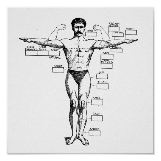 Vintage Muscleman from 1905 Poster