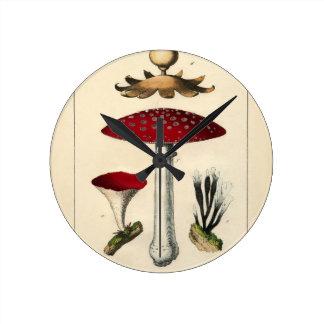 Vintage Mushroom Botanical Print Round Clock