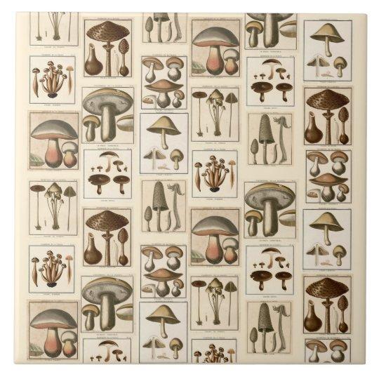 Vintage Mushroom Botanical Prints Trivet Large Square Tile