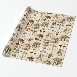 Vintage Mushroom Botanical Prints Wrapping Paper