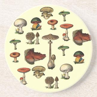 Vintage Mushroom Guide Coaster