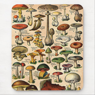 Vintage Mushroom Guide Mouse Mat