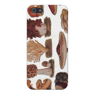 Vintage Mushroom iPhone 5/5S Case