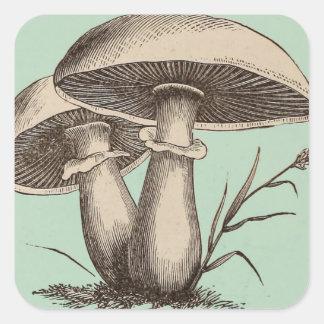 Vintage Mushroom Sticker