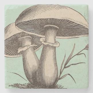 Vintage Mushroom Stone Coaster