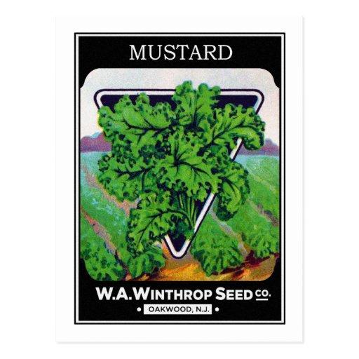 Vintage Mustard Seed Package Label Post Card