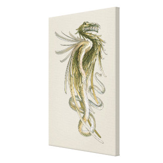 Vintage Mythology, Winged Dragon Snake Tail Canvas Prints