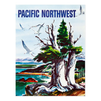 Vintage Nature Wildlife Pacific Northwest Travel Postcard