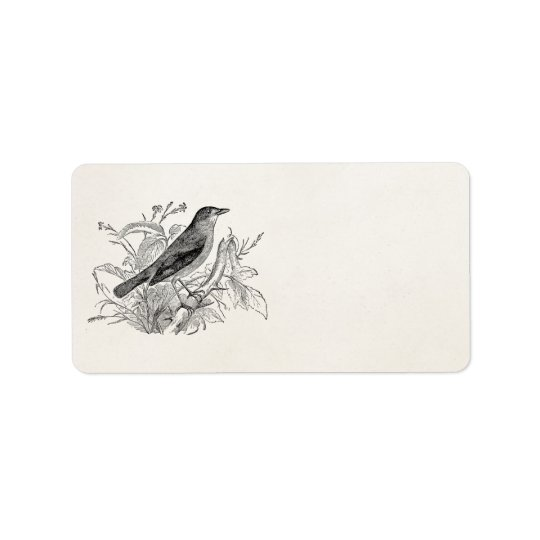 Vintage Nightingale Bird Personalised Retro Birds Address Label