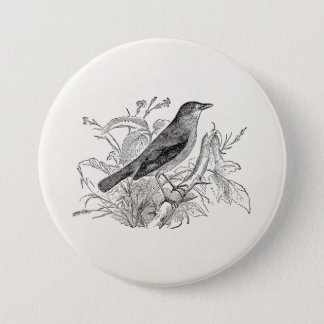Vintage Nightingale Bird Personalized Retro Birds 7.5 Cm Round Badge