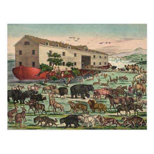 Vintage Noahs Ark Animals Illustration 1882 Postcards