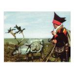 Vintage Norway, Norwegian Journey with a reindeer Postcard