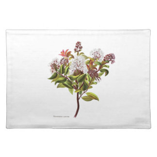 Vintage NZ Flowers - Meterosideros albiflora Placemat