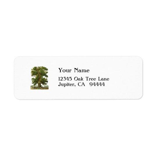 Vintage Oak Tree Custom Address Label