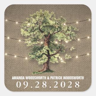 Vintage Oak Tree Rustic Lights Wedding Favors Square Sticker