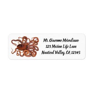 Vintage Octopus Macropus, Marine Aquatic Animals