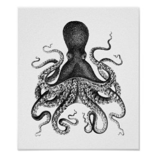 Vintage Octopus Poster