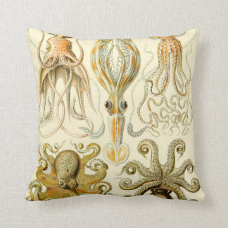 Vintage Octopus Squid Gamochonia by Ernst Haeckel Cushion