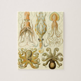 Vintage Octopus Squid Gamochonia by Ernst Haeckel Jigsaw Puzzle