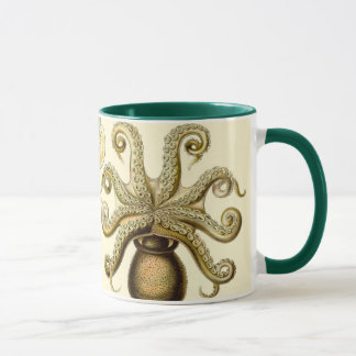 Vintage Octopus Squid Gamochonia by Ernst Haeckel Mug