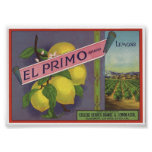 Vintage Old Lemons Fruit Crate Labels Posters