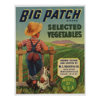 Vintage Old Vegetables Fruit Crate Labels Poster