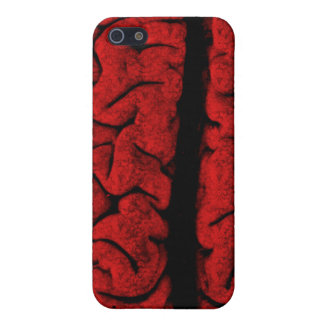 Vintage On The Brain  Cover For iPhone 5/5S