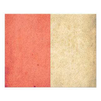 Vintage Orange Cream Bicolor Grunge Pattern Custom Flyer
