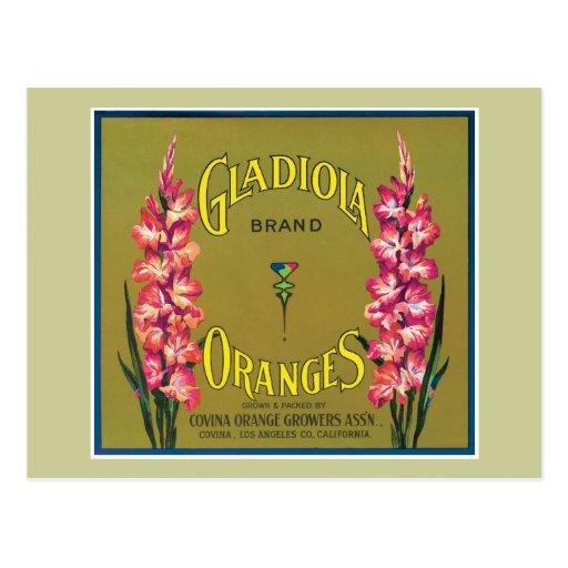 Vintage Orange Food Product Label Post Cards