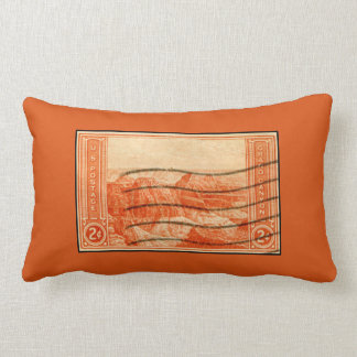 Vintage Orange Grand Canyon Landscape US Postage Throw Pillows