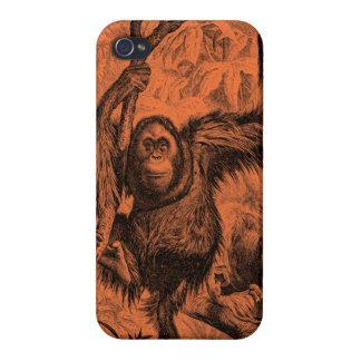 Vintage Orange Orangutan Illustration - Monkey iPhone 4/4S Covers