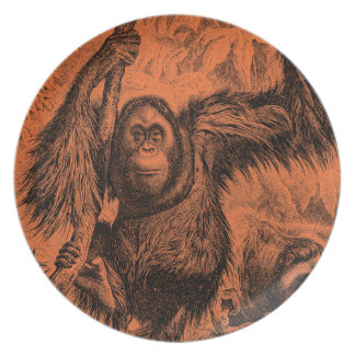 Vintage Orange Orangutan Illustration - Monkey Plate