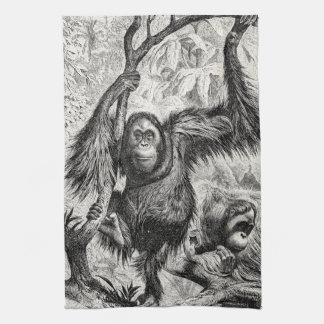 Vintage Orangutan Illustration -1800's Monkey Hand Towels