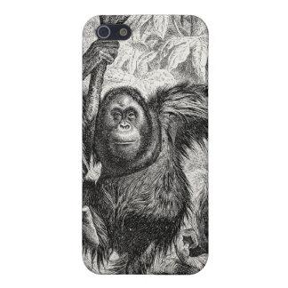 Vintage Orangutan Illustration -1800's Monkey Covers For iPhone 5