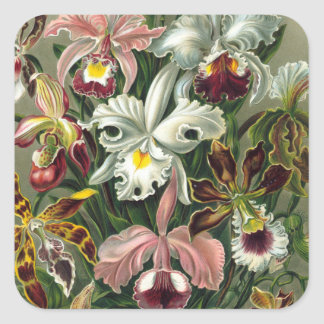 Vintage Orchid Stickers