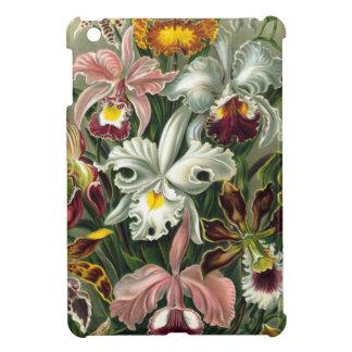 Vintage Orchids Illustration iPad Mini Cases