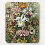 Vintage Orchids Mousepad