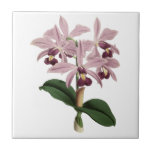 Vintage Orchids Tile