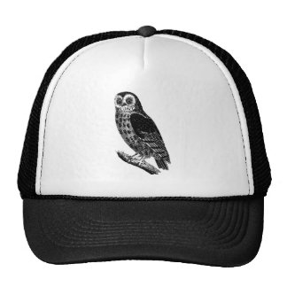 Vintage Owl Illustration Retro Antique Bird Owls Cap