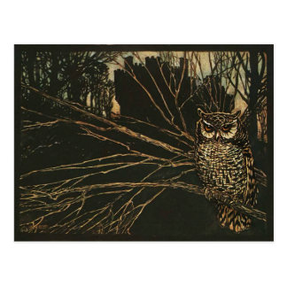 Vintage Owl in the Woods Postcard