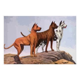 Vintage Painted Great Danes Poster
