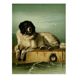 Vintage painting: Bucovina Shepherd Postcard