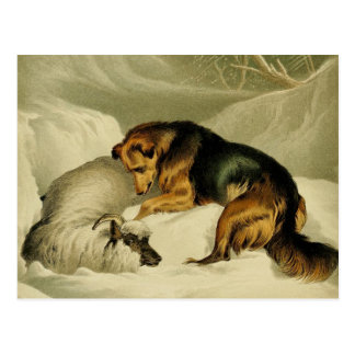Vintage Painting: German Shepherd in the Snow Postcard