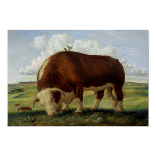 Vintage painting of a Hereford bull Poster