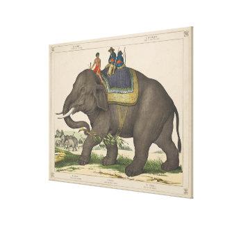 Vintage Painting of Men Riding an Elephant Canvas Print