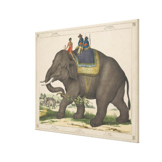 Vintage Painting of Men Riding an Elephant Gallery Wrap Canvas