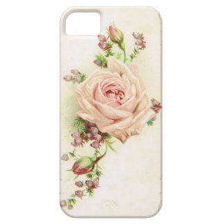 Vintage Pale Pink Rose Botanical Phone Cover iPhone 5 Cover