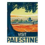 Vintage Palestine Middle East Post Card