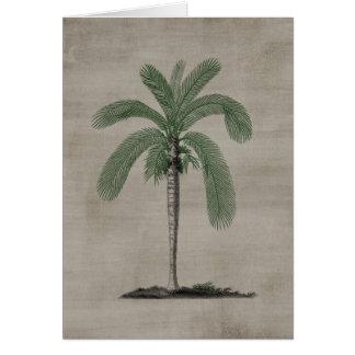 Vintage Palm Tree Greeting Card
